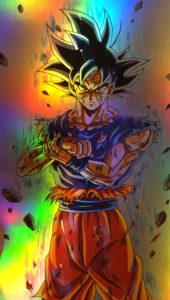 Ultra Goku Holo