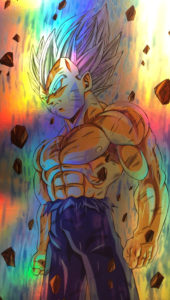 Perfect Vegeta Holo